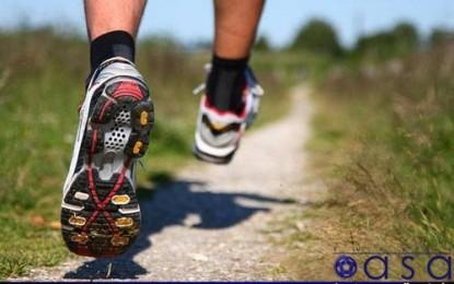 دویدن یا پیاده روی ؟ / ورزش و تندرستی مقاله چهاردهم